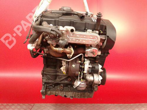 BKD / B05155 Motor A3 (8P1) 2.0 TDI (140 hp) [2005-2008] BMM 3527652