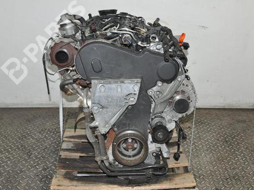 AUDI: CAY Motor A3 (8P1) 1.6 TDI (105 hp) [2009-2012]  7483378