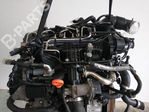 CAY   Motor A3 (8P1) 1.6 TDI (105 hp) [2009-2012]  7662277