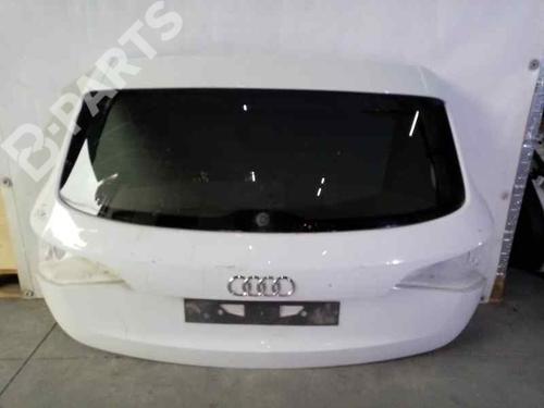 Bagklap CC/Kombi-Coupé Q5 (8RB) 3.0 TDI quattro (240 hp) [2008-2017]  5644564