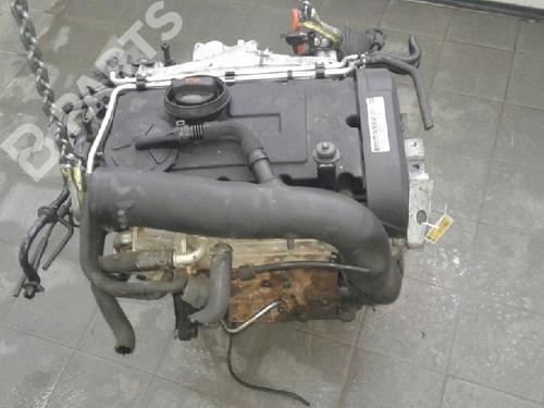 AUDI: 03G100098BX , 03G130073G Motor A3 (8P1) 2.0 TDI (136 hp) [2003-2012]  7875658