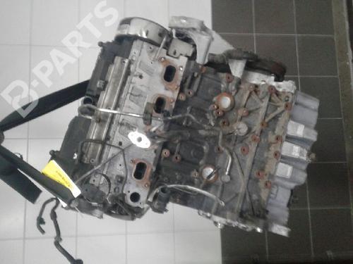 Motor A3 Sportback (8PA) 2.0 TDI 16V (140 hp) [2004-2013]  4771451