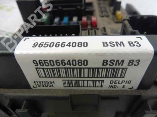 Caixa de fusíveis PEUGEOT 206 Hatchback (2A/C) 2.0 HDI 90 9650664080 | BSMB3 | 7025353