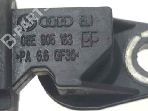 Elektronensonde AUDI Q7 (4LB) 3.0 TDI quattro 06E905163 | 32742395