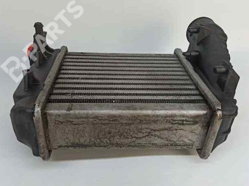 Intercooler AUDI A4 Convertible (8H7, B6, 8HE, B7) 2.5 TDI 8E0145806C   43161757