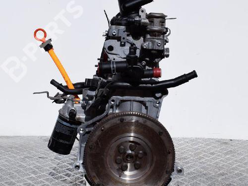 AUDI: CMX Motor A3 (8P1) 1.6 (102 hp) [2003-2012]  6838480