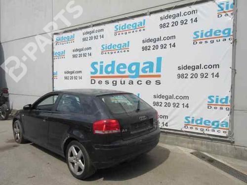 AUDI A3 (8P1) 2.0 TDI (140 hp) [2005-2008] 29738518